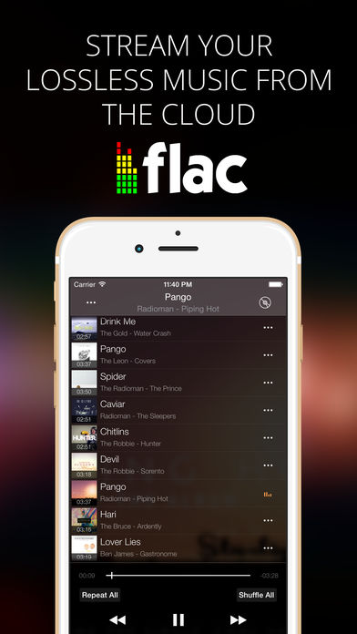 Flacbox - FLAC, MP3 player alternatives - similar apps